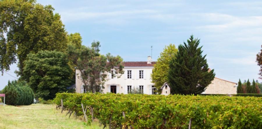 Tại sao Côtes de Bordeaux nên được xem là sức sống của Rượu vang Pháp