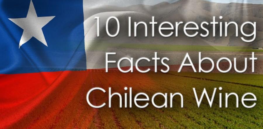 10 điều thú vị về rượu vang Chile